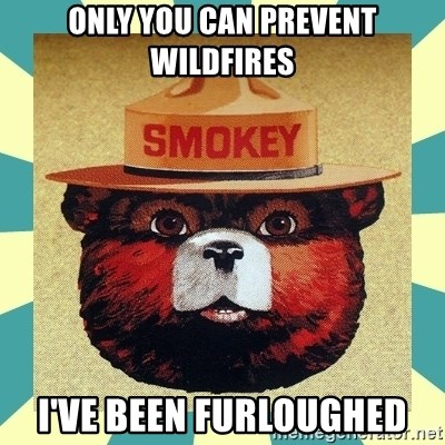 Smokey the Bear - Only you can prevent wildfires I've been furloughed