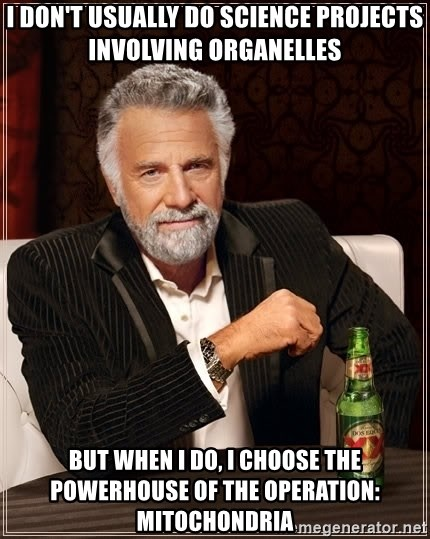 The Most Interesting Man In The World - I don't usually do science projects involving organelles But when I do, I choose the powerhouse of the operation: Mitochondria