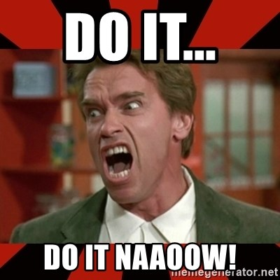 Arnold Schwarzenegger 1 - DO IT...  DO IT NAAOOW!