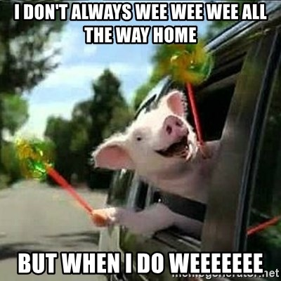 geico pig - i don't always wee wee wee all the way home  but when i do weeeeeee