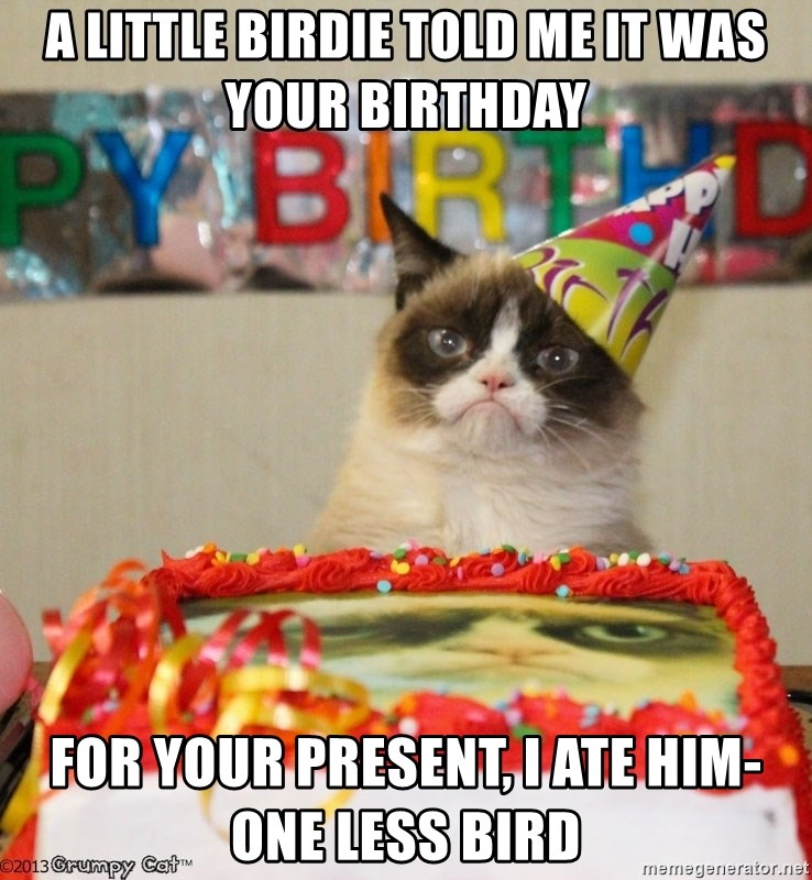 Grumpy Cat Birthday hat - A little birdie told me it was your birthday For your present, I ate him- one less bird
