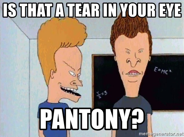 Beavis and butthead - Is that a tear in your eye  PANTONY?