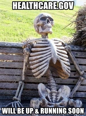 Waiting Skeleton - healthcare.gov will be up & running soon