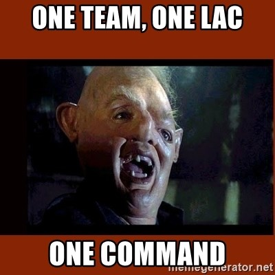 Sloth Goonies  - One team, one LAC One command