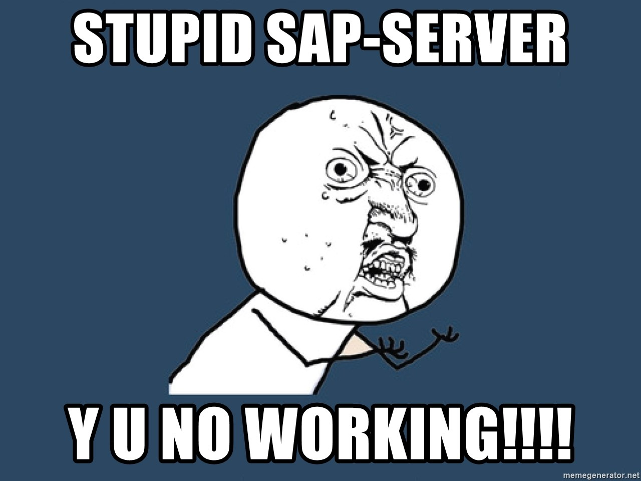 Y U No - stupid SAP-Server Y U No working!!!!