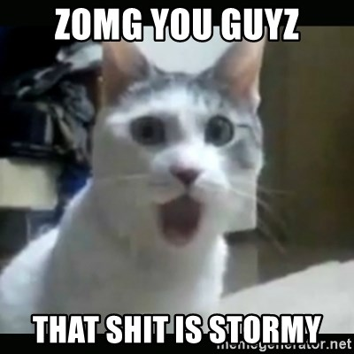Surprised Cat - Zomg you guyz that shit is stormy