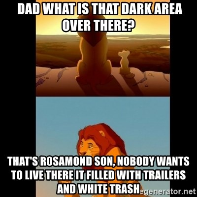 Lion King Shadowy Place -  Dad what is that dark area over there? That's Rosamond son, nobody wants to live there it filled with trailers and white trash