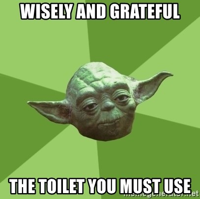 Advice Yoda Gives - Wisely and grateful the toilet you must use