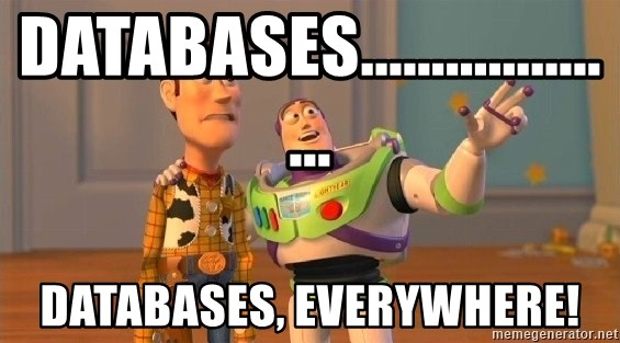 Consequences Toy Story - Databases.................... Databases, Everywhere!
