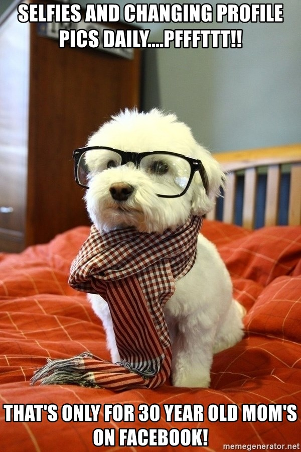 hipster dog - Selfies and changing profile pics daily....pfffttt!! That's only for 30 year old mom's on Facebook!