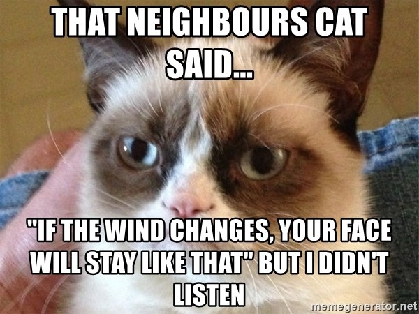 """Angry Cat Meme - That neighbours cat said... """"if the wind changes, your face will stay like that"""" but i didn't listen"""