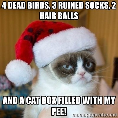 Grumpy Cat Santa Hat - 4 dead birds, 3 ruined socks, 2 hair balls And a cat box filled with my pee!