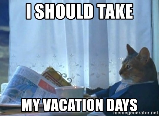 newspaper cat realization - i should take my vacation days