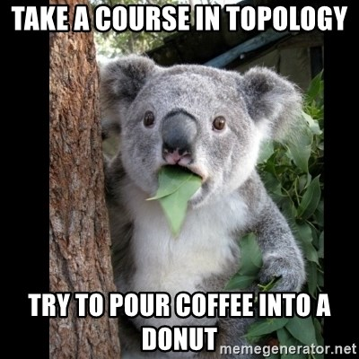 Koala can't believe it - take a course in topology try to pour coffee into a donut
