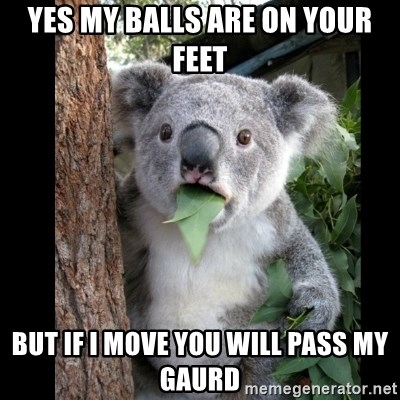 Koala can't believe it - Yes my balls are on your feet But if i move you will pass my gaurd