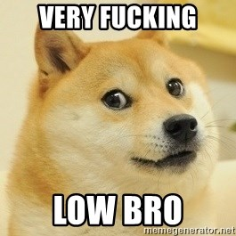 Dogeeeee - Very fucking Low bro