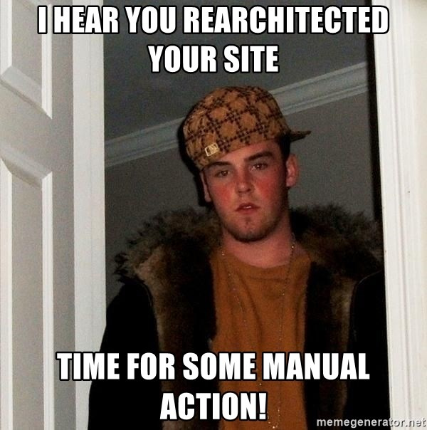 Scumbag Steve - I hear you rearchitected your site time for some manual action!