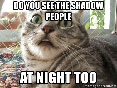 scared cat - Do you see the shadow people At night too