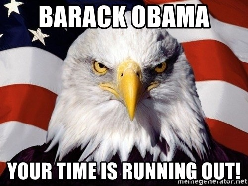 American Pride Eagle - Barack Obama  your time is running out!