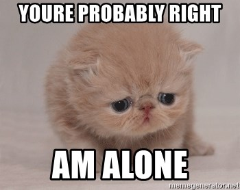 Super Sad Cat - youre probably right am alone