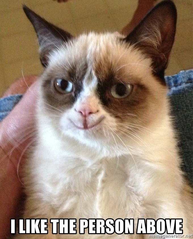 Grumpy Cat Happy Version -  I like the person above