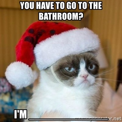 Grumpy Cat Santa Hat - you have to go to the bathroom? i'm _____________