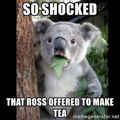 Koala can't believe it - so shocked that ross offered to make tea