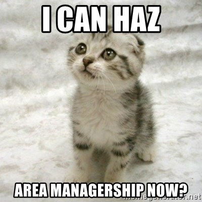 Can haz cat - i can haz area managership now?