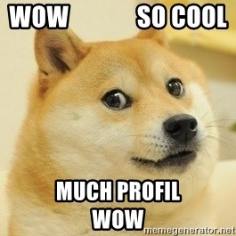 Dogeeeee - Wow              So cool Much profil             Wow