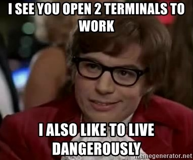 Austin Power - I see you open 2 terminals to work i also like to live dangerously