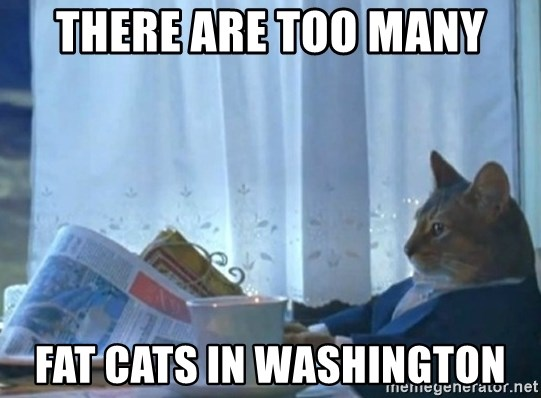 newspaper cat realization - there are too many fat cats in washington