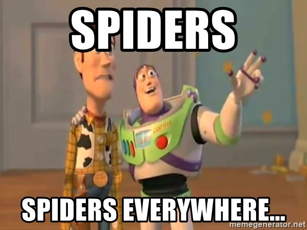 X, X Everywhere  - spiders spiders everywhere...
