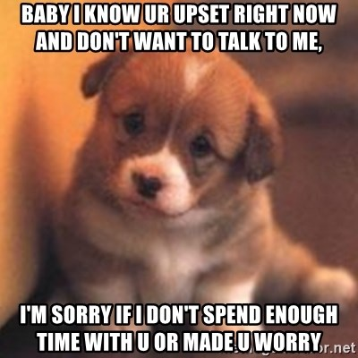 cute puppy - Baby I know ur upset right now and don't want to talk to me,  I'm sorry if I don't spend enough time with u or made u worry