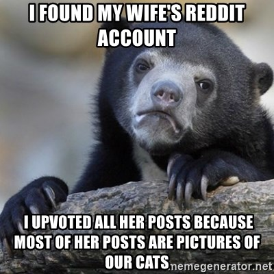 Confession Bear - I found my wife's reddit account  I upvoted all her posts because most of her posts are pictures of our cats