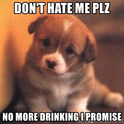 cute puppy - Don't hate me plz No more drinking I promise