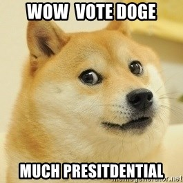 Dogeeeee - wow  vote doge much presitdential