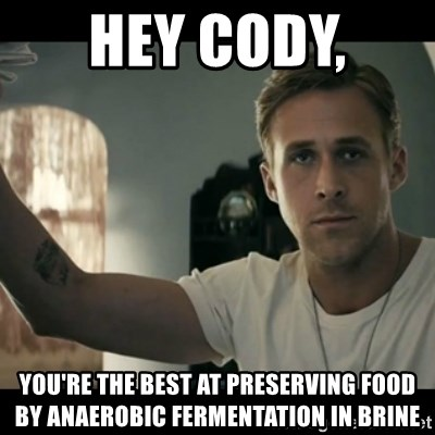 ryan gosling hey girl - Hey Cody,  you're the best at preserving food by anaerobic fermentation in brine