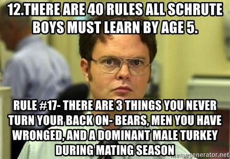 Dwight Schrute - 12.There are 40 rules all Schrute boys must learn by age 5.  Rule #17- There are 3 things you never turn your back on- bears, men you have wronged, and a dominant male turkey during mating season