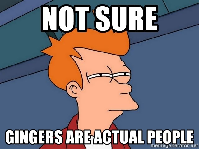 Futurama Fry - NOT SURE  gINGERS ARE ACTUAL PEOPLE