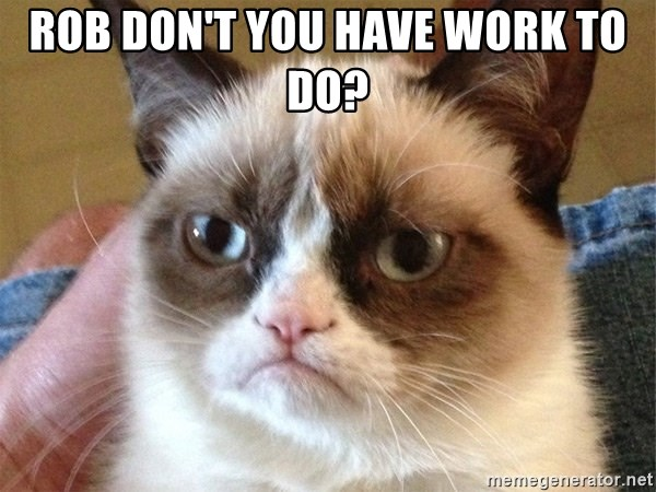 Angry Cat Meme - Rob don't you have work to do?