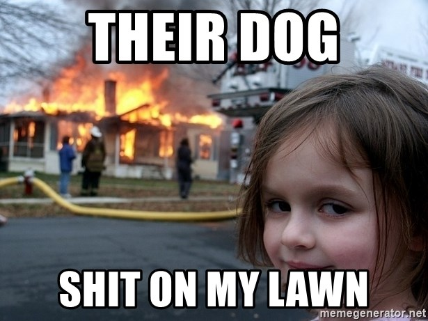 Disaster Girl - Their dog shit on my lawn