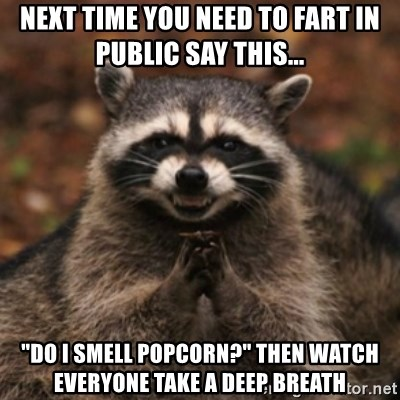 """evil raccoon - next time you need to fart in public say this... """"Do i smell popcorn?"""" then watch everyone take a deep breath"""