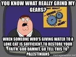 YOU KNOW WHAT REALLY GRIND MY GEARS - You know what really grind my gears? when someone who's giving water to a lone cat is sufficient to restore your faith. god damnit, go tell this to palestinians