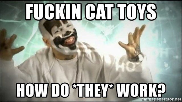 Insane Clown Posse - FUCKIN CAT TOYS HOW DO *THEY* WORK?