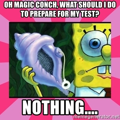 magic conch shell - Oh magic conch, what should i do to prepare for my test? Nothing....