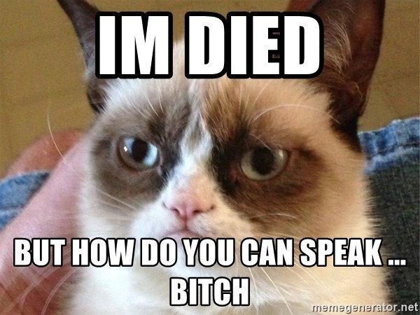 Angry Cat Meme - Im died but how do you can speak ... bitch