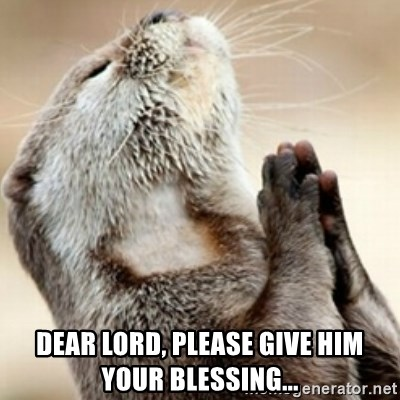 Praying Otter -  dear lord, please give him your blessing...
