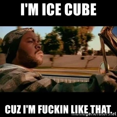 Ice Cube- Today was a Good day - i'm ice cube cuz i'm fuckin like that.