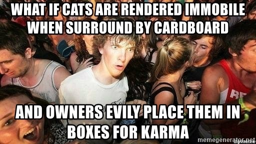 -Sudden Clarity Clarence - What if cats are rendered immobile when surround by cardboard And owners evily place them in boxes for karma