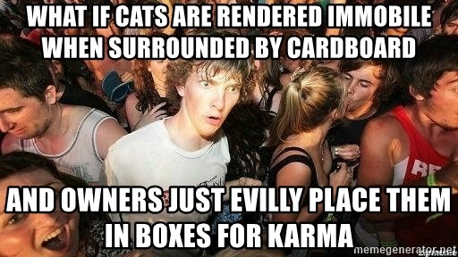 -Sudden Clarity Clarence - What if cats are rendered immobile when surrounded by cardboard And Owners just evilly place them in boxes for karma